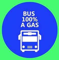 bus-al-toke_04